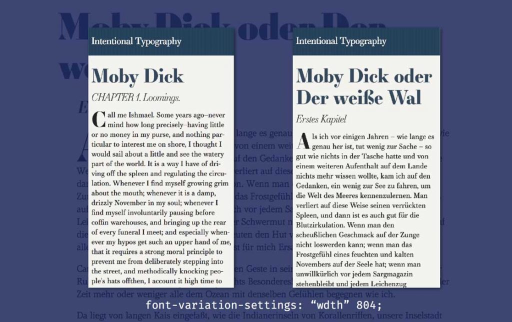 moby dick type example